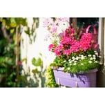 Gardena Bewässerungsautomat city gardening Vollautomatische Blumenkastenbewässerung 1407-20