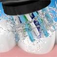 Braun Elektrische Zahnbürste Oral-B Pro 2 2000 Black Edition