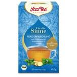 Yogi Tea Bio Für die Sinne - Pure Erfrischung Teemischung 40g
