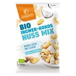 Landgarten Bio Ingwer-Kokos-Nuss Mix 50g