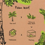 Biozoyg Kompostierbare Palmblatt Teller rund Ø 25 cm