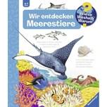 Wir entdecken Meerestiere Erne, Andrea Ravensburger Verlag