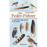 Der Feder-Führer Gabler, Eberhard Bassermann
