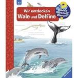 Wir entdecken Wale und Delfine Rübel, Doris Ravensburger Verlag