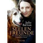 Seelenfreunde Barton, Julie Droemer/Knaur