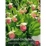 Freiland-Orchideen Vogler, Irmin BLV Buchverlag