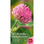 Wildkräuter & Heilpflanzen Kremer, Bruno P. BLV Buchverlag