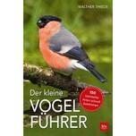 Der kleine Vogelführer Thiede, Walther BLV Buchverlag