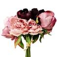 Butlers Wintergreen Pfingstrosenstrauß 29 cm rosa