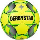Derbystar Fussball Basic Pro TT Futsal
