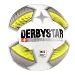 Derbystar Fussball Brillant TT DB