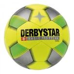 Derbystar Fussball Futsal Basic Pro TT