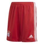 adidas Kinder FC Bayern München Home Short 2020/21
