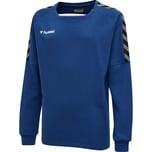 Hummel Kinder Sweatshirt Authentic Training Sweat 205374