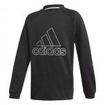 adidas Jungen Pullover Training Sweat Crew Q4
