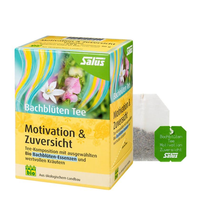 Salus Bachblüten Tee Motivation 30g