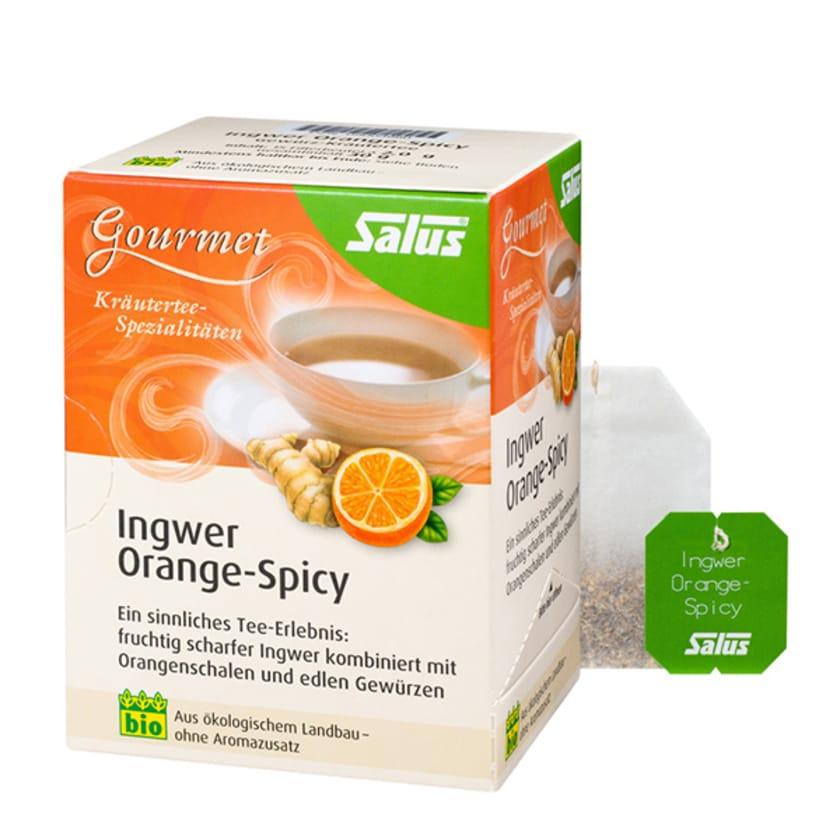 Salus Ingwer Orange-Spicy 30g