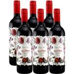 Allumea Nero d'Avola Merlot DOP Sicilia Organic Rotwein 6x0,75l, 4,5l