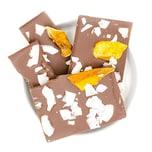 1001 Frucht Für Dich Bio Schokolade mit Mango und Kokos 90g