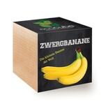 Feel Green EcoCube Zwergbanane
