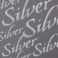 Winsor & Newton Kalligraphietusche 30ml silber