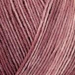 REGIA Premium Silk Color 4fädig 100g 400m feige color