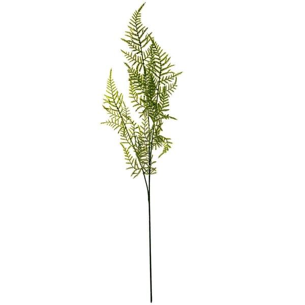 Asparaguszweig hellgrün 70cm