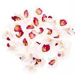 Orchideenblüten weiß 28 Stück