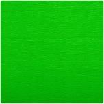 Rico Design Krepp-Papier 50x250cm grün