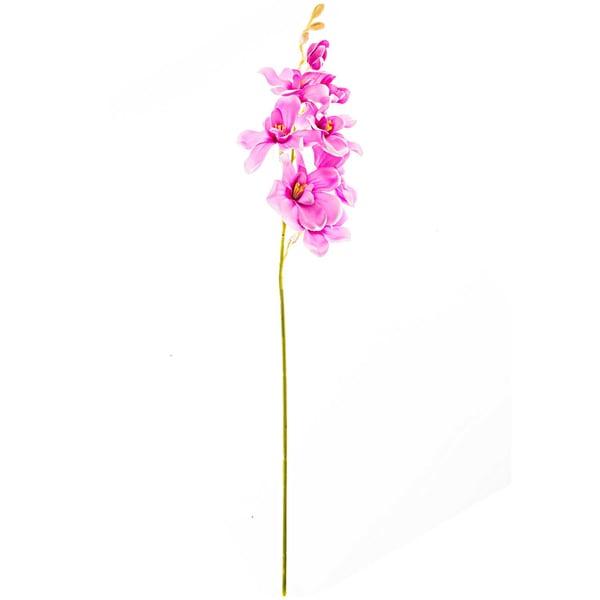 Dendrobie pink 56cm