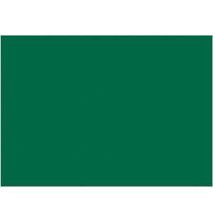 folia Fotokarton 50x70cm 300g/m² tannengrün