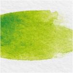 Rico Design ART Künstler Aquarellfarbe halbes Näpfchen blattgrün