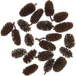 Kiefernzapfen natur 30g