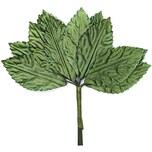 Deko Blätter im Bund grün 4,8x2,5cm