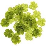 Glücksklee grün 36 Stück