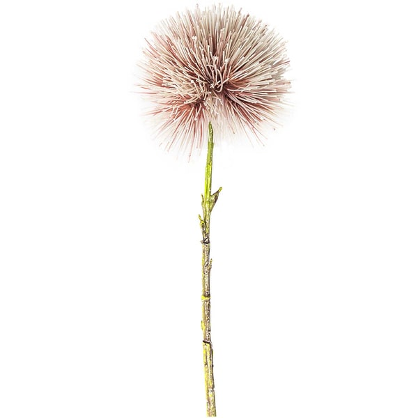 Blutblume rosa 48cm