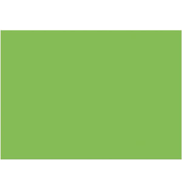 folia Tonzeichenpapier 50x70cm 130g/m² hellgrün