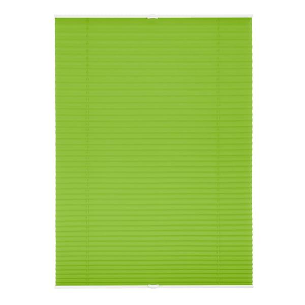 Lichtblick Plissee Klemmfix ohne Bohren Grün