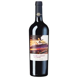 Vinas Don Martin Malbec Cabernet Sauvignon 2013 Rotwein trocken 14,5% 0,75l