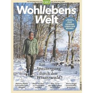 Wohllebens Welt 4/2019 Ein Spaziergang durch den Winterwald!
