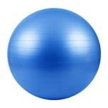 LOMOS professioneller Gymnastikball 75 cm inkl. Luftpumpe, blau