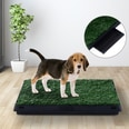 Pawhut Welpentoilette mit herausnehmbarer Schublade grün/schwarz