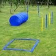 Pawhut Hund Agility Set inkl. Tragetasche gelb-blau