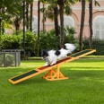 Pawhut Hundewippe für Einsteiger grün/braun