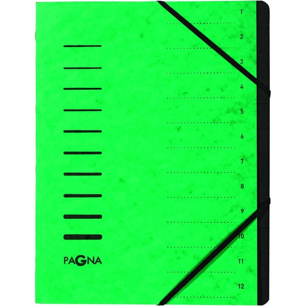 Pagna Ordnungsmappe A4 12 Fächer grün Nr. 40059-03 Karton 1-12 280g/m²