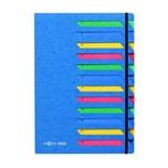 Pagna Ordnungsmappe A4 12 Fächer blau Nr. 24141-02 Deskorganizer 1-12