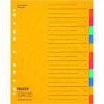 Falken Register A4 12-teilig blanko Nr. 11359320 Colorspankarton Überbreite