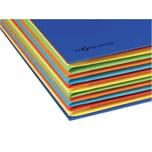 Pagna Ordnungsmappe A4 12 Fächer blau Nr. 44133-02 Deskorganizer 225g Karton