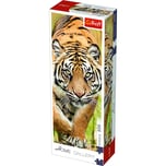 Trefl Home Gallery Puzzle Tiger 300 Teile