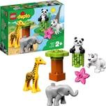 LEGO 10904 duplo: Süße Tierkinder